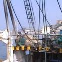 """Libia, """"bentornato ai pescatori, ora serve confronto e cooperazione""""  Dichiarazione del segretario generale Uilapesca Sicilia Tommaso Macaddino"""