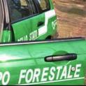 Il governo regionale sospende i forestali per mancanza di fondi. Giovedì sit-in di Flai Cgil, Fai Cisl e Uila davanti Prefettura di Trapani